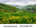 summer landscape. yellow flowers on the meadow hillside. village near forest in fog on the mountain - stock photo
