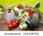 Fresh And Organic Vegetables In ...