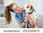 Young Happy Veterinary Nurse...