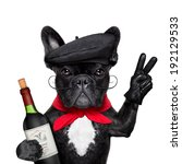 French Bulldog With Red Wine  ...