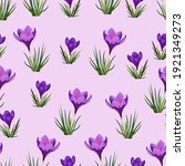 A Pattern Of Crocus Flowers On...
