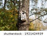 Birdhouse On A Green Tree....