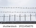 Barbed Wire On The Fence...