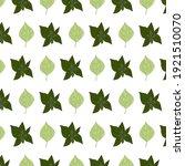mint poplar pattern. idea for... | Shutterstock .eps vector #1921510070