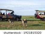 Masai Mara  Na Kenya  ...