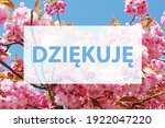dziekuje  thank you written in... | Shutterstock . vector #1922047220