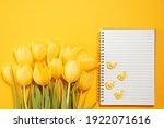 Yellow Tulips On Yellow...