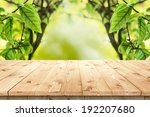 empty wooden table in a sun... | Shutterstock . vector #192207680