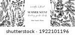 hand sketched medicinal herbs... | Shutterstock .eps vector #1922101196