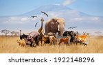 Group Of Many African Animals...
