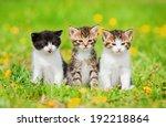 Three Little Kittens Sitting O...