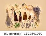 alternative herb medicine....   Shutterstock . vector #1922541080