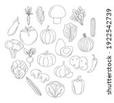 healthy vegetables icons around ... | Shutterstock .eps vector #1922542739