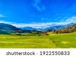 Summer Mountain Green Field...