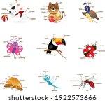 illustration of isolation... | Shutterstock .eps vector #1922573666