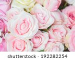 Stock photo natural pink roses background 192282254