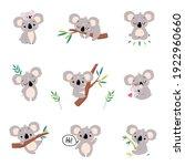 adorable koala in various...   Shutterstock .eps vector #1922960660