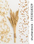 Small photo of Sheaf of wheat ears close up and seeds, chaff on white background. Natural cereal plant, harvest time concept. Flat lay