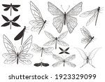 collection of vector...   Shutterstock .eps vector #1923329099