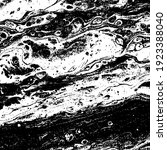 black and white grunge texture. ... | Shutterstock .eps vector #1923388040