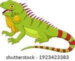 Cartoon Iguana Isolated On...