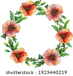 Red Poppy Flower Watercolour...