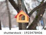 Bird Feeder On A Tree. Top...
