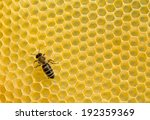 close up view of the working... | Shutterstock . vector #192359369