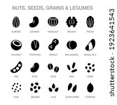 nuts  seeds  grains and legumes ... | Shutterstock .eps vector #1923641543