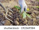 Farmer Digs Pitchforks...