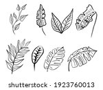 set of abstract leaves. hand... | Shutterstock .eps vector #1923760013