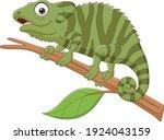 cartoon green chameleon on tree ... | Shutterstock .eps vector #1924043159