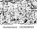 the grunge texture is rough...   Shutterstock .eps vector #1924058969