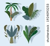tropical plants tree plams... | Shutterstock .eps vector #1924093253