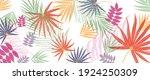 summer tropical background...   Shutterstock .eps vector #1924250309