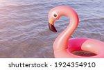 Summer Fun Beach. Pink...