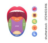 Taste Scheme Concept. Vector...
