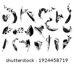set of feathers with birds...   Shutterstock .eps vector #1924458719