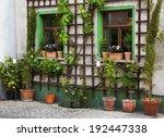 Flowers In Terracotta Pots  ...