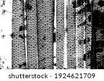 black and white background....   Shutterstock .eps vector #1924621709