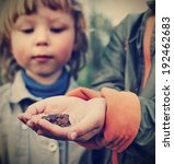 Children See A Toad Found In...