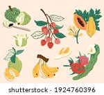 taiwan or tropical fruit... | Shutterstock .eps vector #1924760396