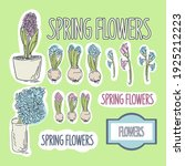 vector set of hyacinths spring... | Shutterstock .eps vector #1925212223