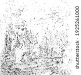 rough black and white texture... | Shutterstock .eps vector #1925261000