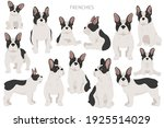 french bulldogs in different... | Shutterstock .eps vector #1925514029