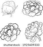 set of flower vector for... | Shutterstock .eps vector #1925609333