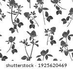 silhouettes of clover flowers... | Shutterstock .eps vector #1925620469