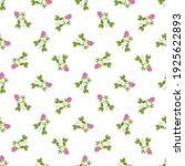 hand drawn red clover on a... | Shutterstock .eps vector #1925622893