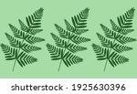 pattern of forest ferns. an... | Shutterstock .eps vector #1925630396