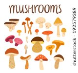different types of mushrooms... | Shutterstock .eps vector #192579389